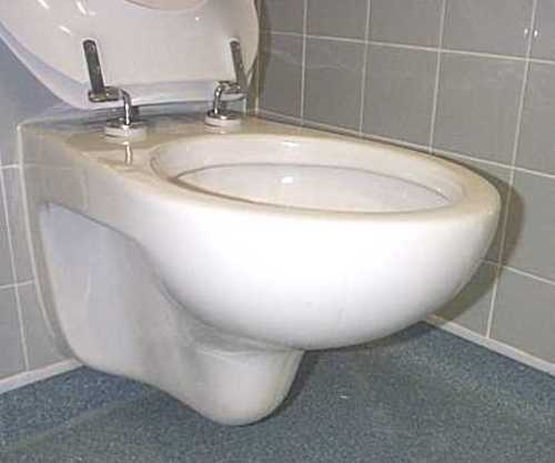 Walvit Wall Hung Toilet Pan.