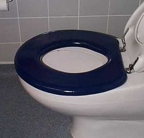 Padded Toilet Seat - Independent Living Centres Australia