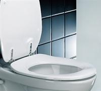 Pressalit Care Dania Toilet Seat