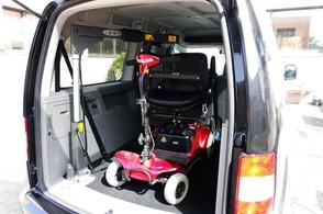 SG50 Vehicle Hoist
