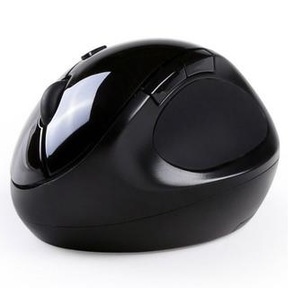 Qisan mouse side view