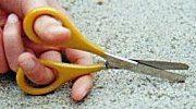 Benbow Scissors