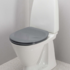 Anthracite toilet seat with lid