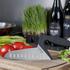 Webequ Knives - Vegetable Knife