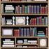 BetterLiving Bookcase Mural