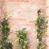 BetterLiving Pot Plant Mural